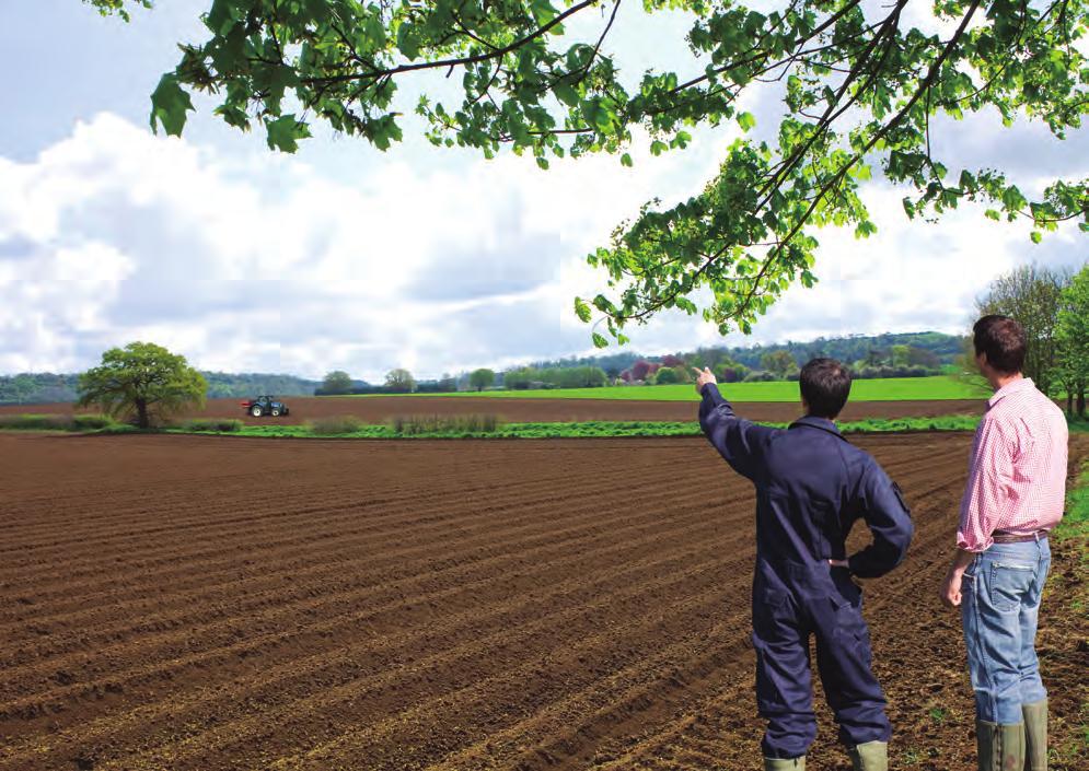 Atividades da FENEC para produtores rurais