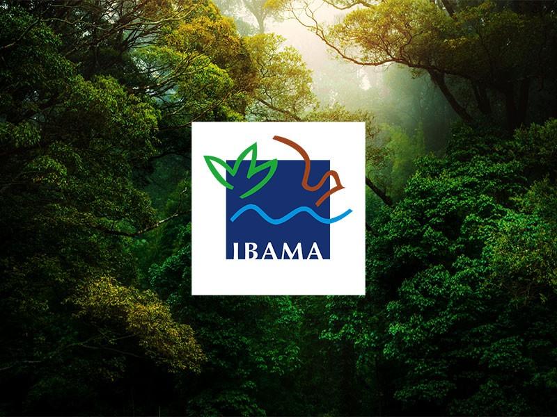 Concurso Ibama – veja o edital e como se inscrever